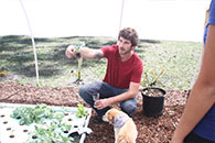 Student with doggo in hydroponic garden