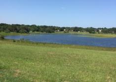 Lake Florence Park